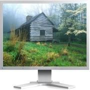 """ΟΘΟΝΗ EIZO FLEXSCAN S2133-GY 21.3"""" IPS LCD UXGA GREY"""